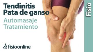 18. Auto-masaje de la tendinitis de la Pata de ganso