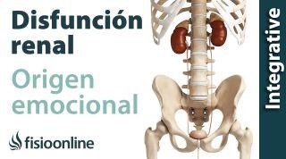 Origen emocional de la disfunción de riñón.