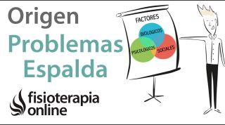 Origen multifactorial de los problemas de espalda, articulares y musculares