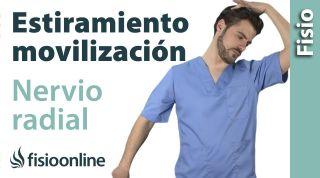 Estiramiento y movilización del nervio radial.