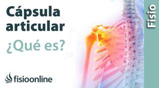 Cápsula articular y capsulitis. ¿Qué es?