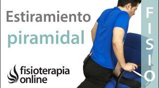 Estiramiento del piramidal para los problemas de espalda