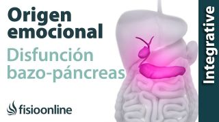 Origen emocional de la disfunción de bazo-páncreas.