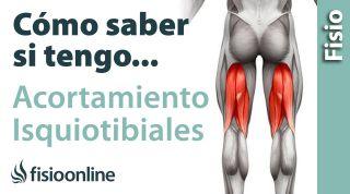 Cómo saber si tienes un ACORTAMIENTO de los músculos isquiotibiales