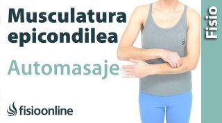 Auto-masaje para la musculatura epicondilea.
