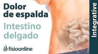 Tratamiento para dolor  lumbar o ciática provocado por una alteración del intestino delgado