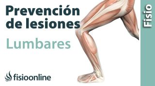 Isquiotibiales - Importancia de su estiramiento para el dolor lumbar
