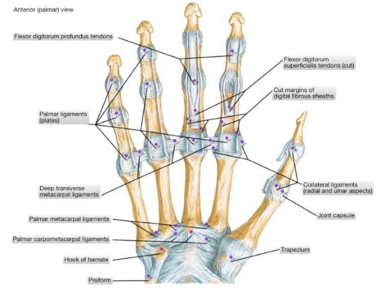 dolor de dedos