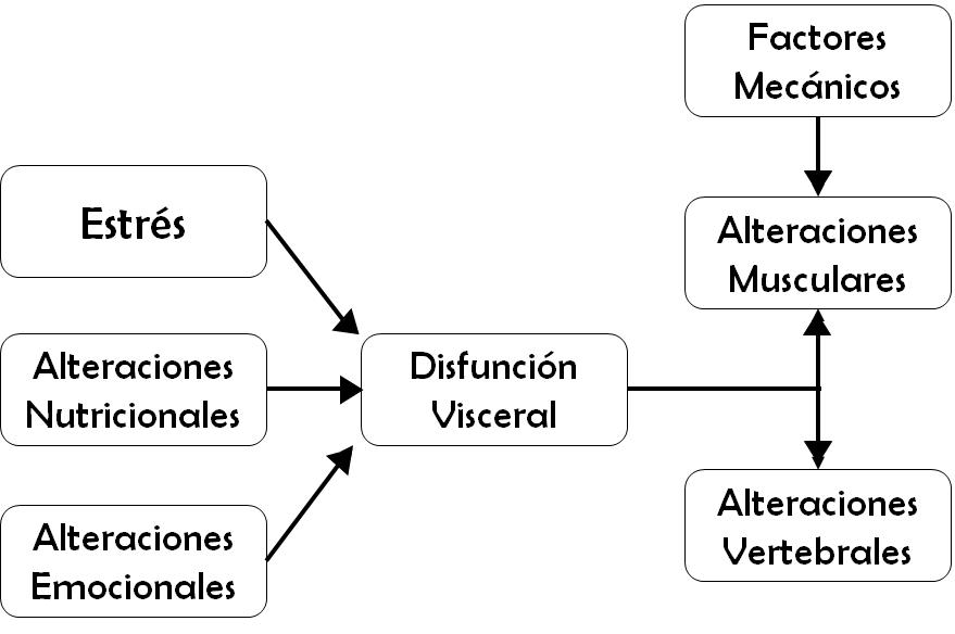 Infografía de Fiit Concept - Fisioterapia Integrativa